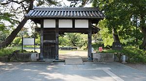 大国亀城公園近くの髙田知己法律事務所